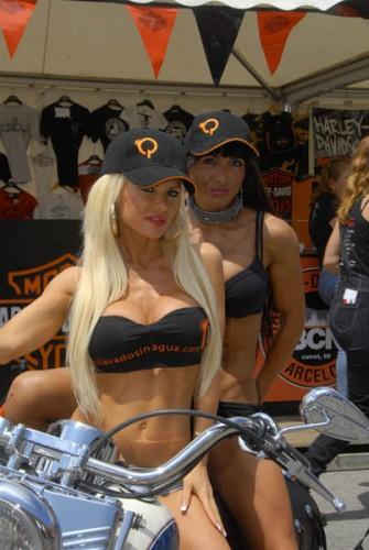 Barcelona Harley Days 2012 083