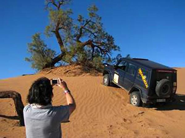 Sahara Aventura