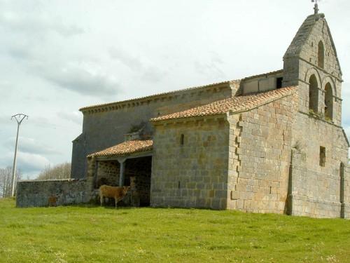 Aguilar de Campoo Necropolis de San Martin 1